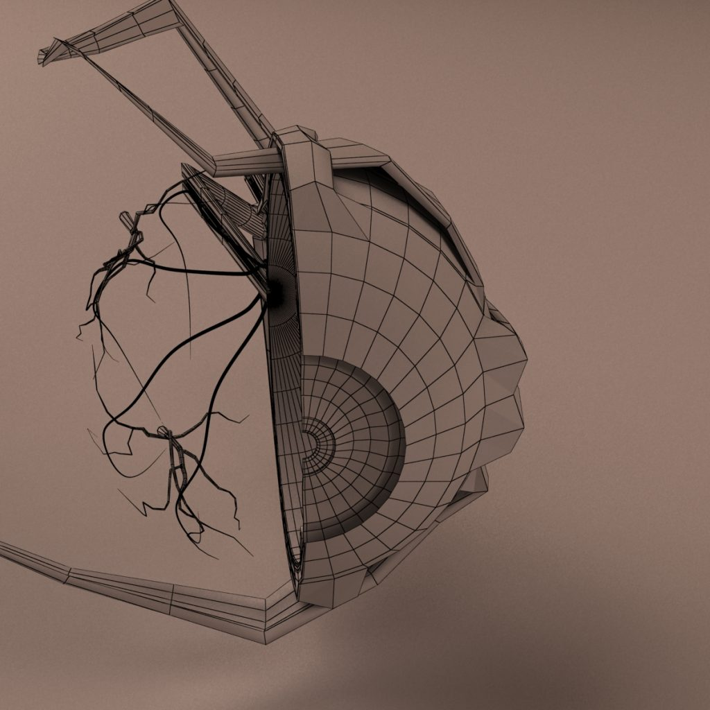Human Eye - Wireframe Rendering