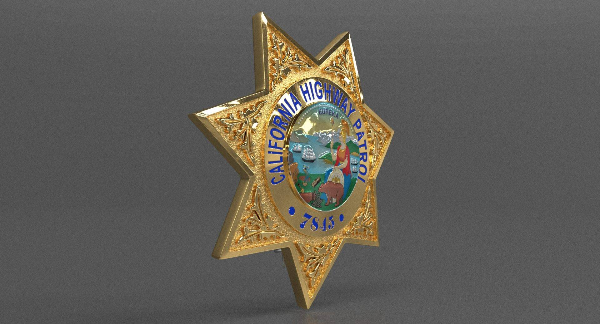 Highway Police Badge